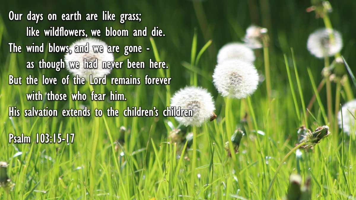 Psalm 103:15-17