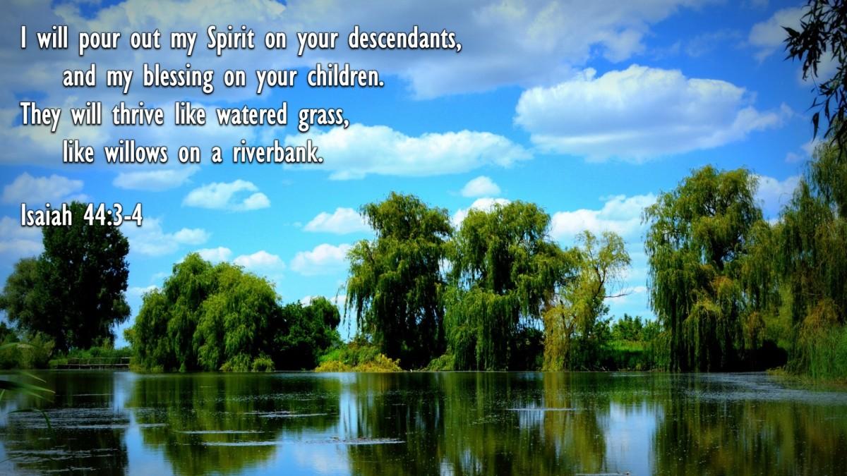 Isaiah 44:3-4