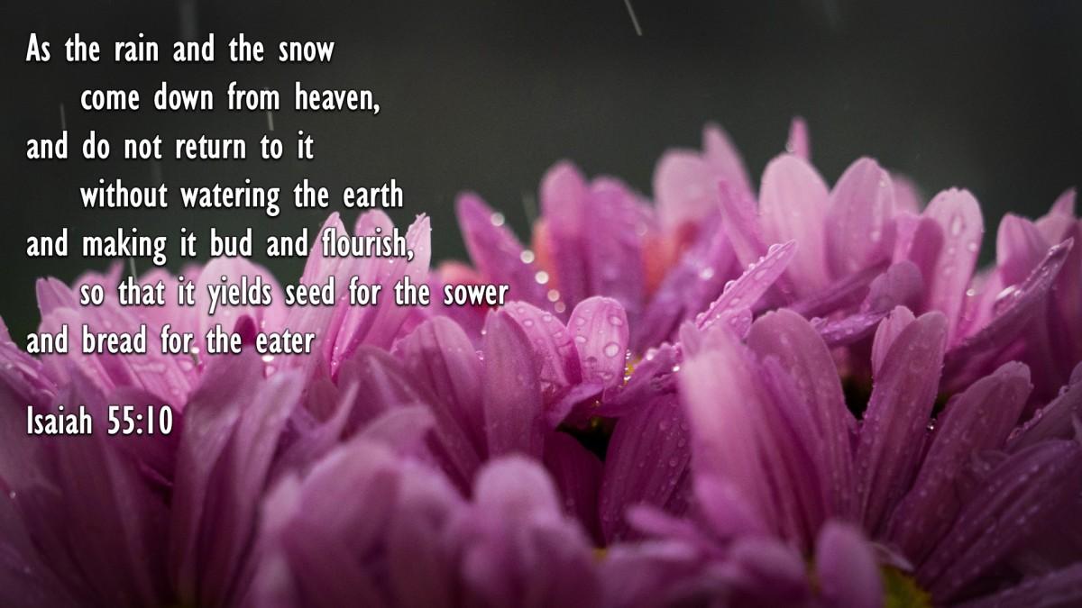 Isaiah 55:10