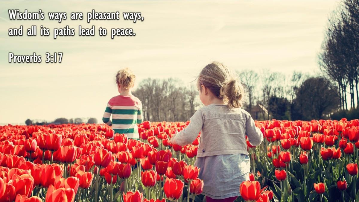 Proverbs 3:17
