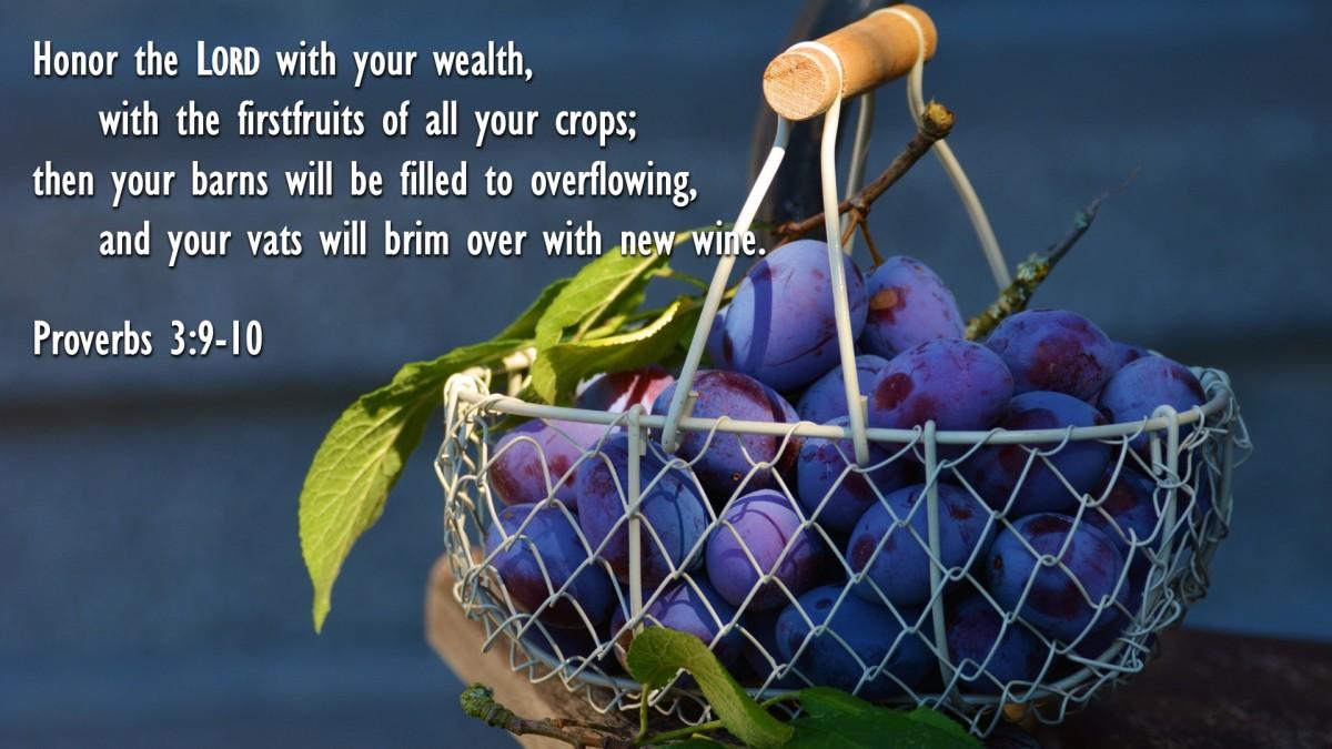 Proverbs 3:9-10