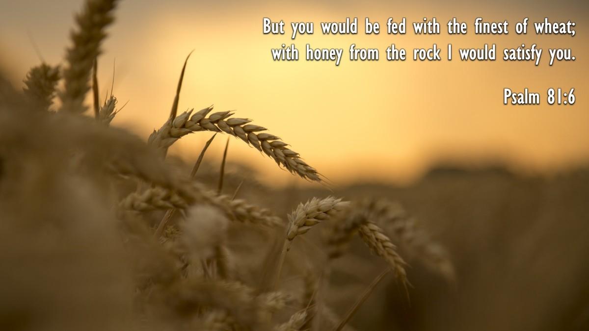 Psalm 81:6