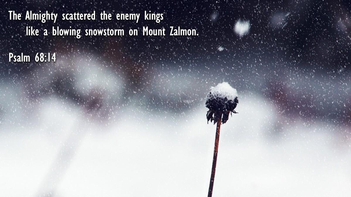 Psalm 68:14
