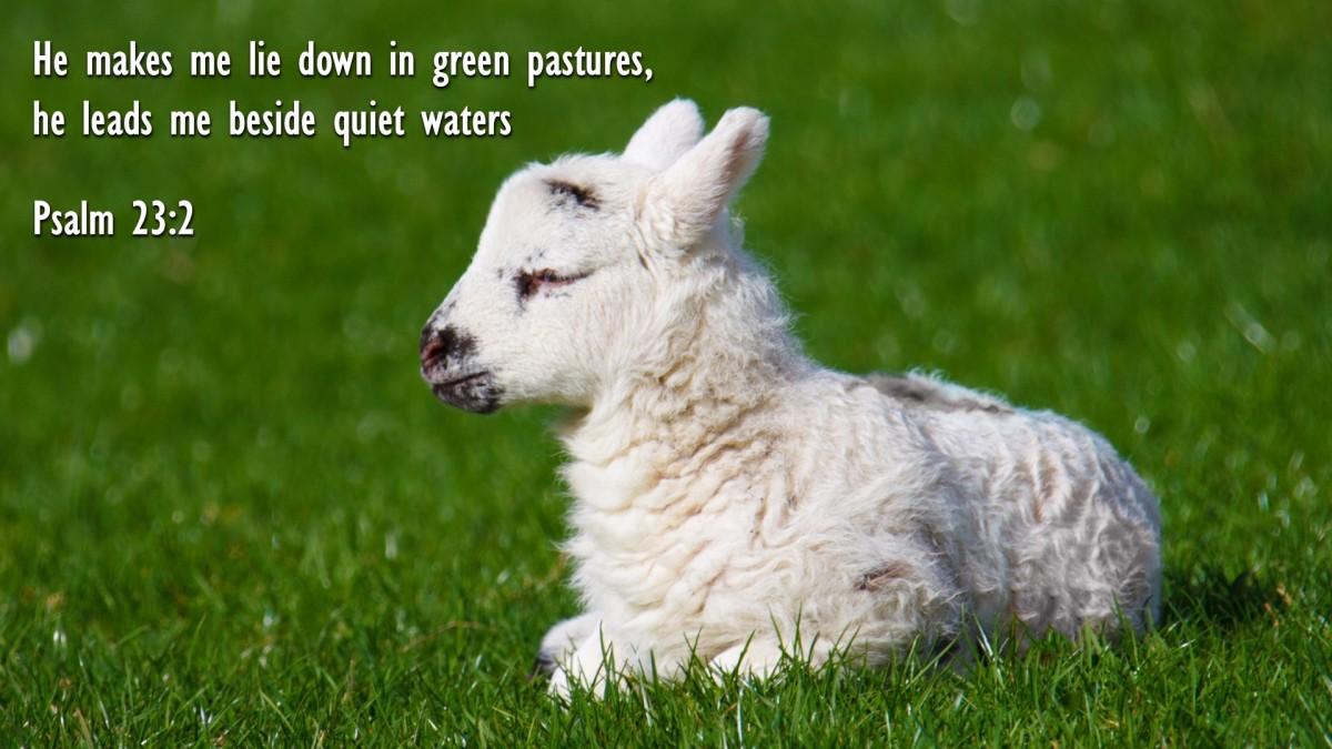 Psalm 23:2