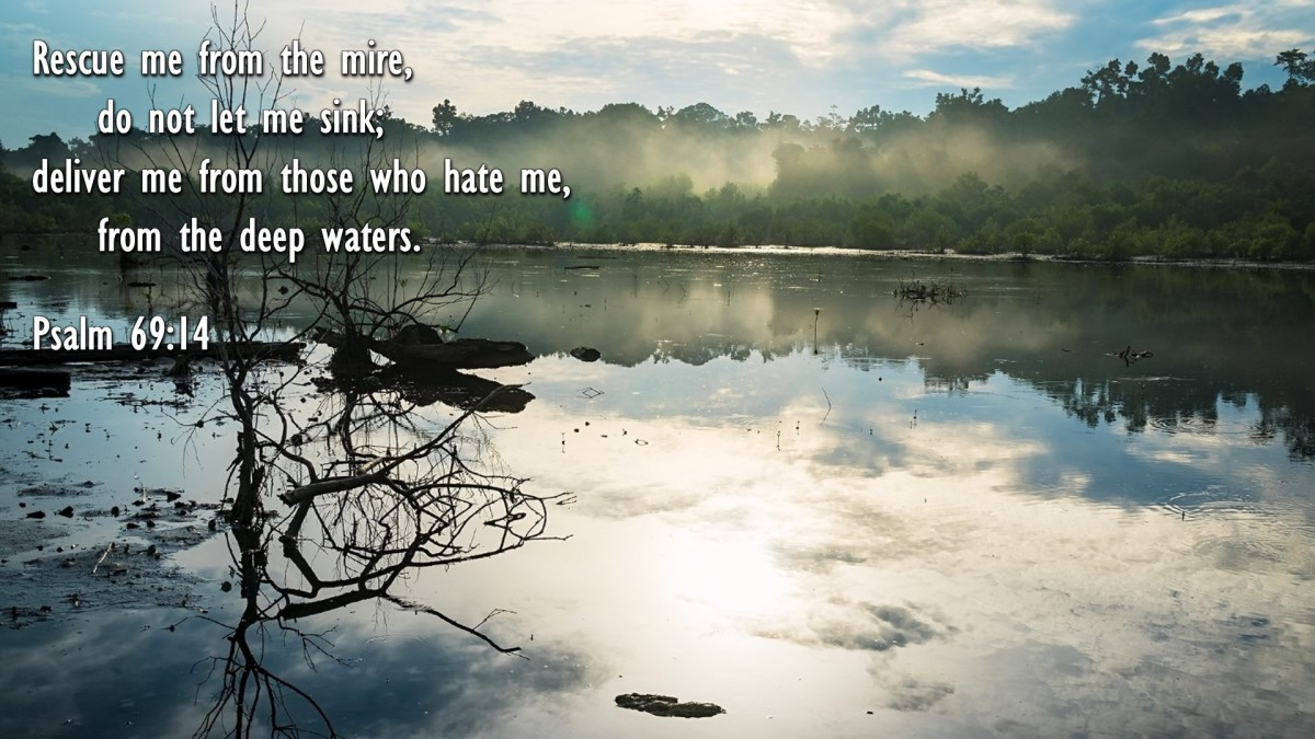 Psalm 69:14