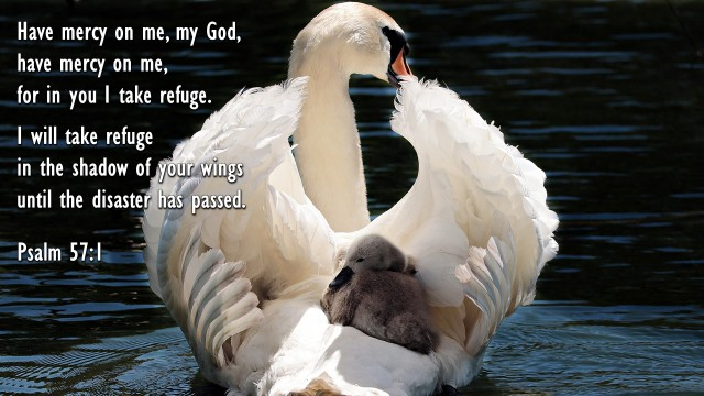 Image result for psalm 57